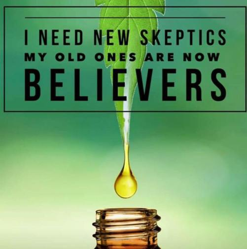 rci skeptics and believers